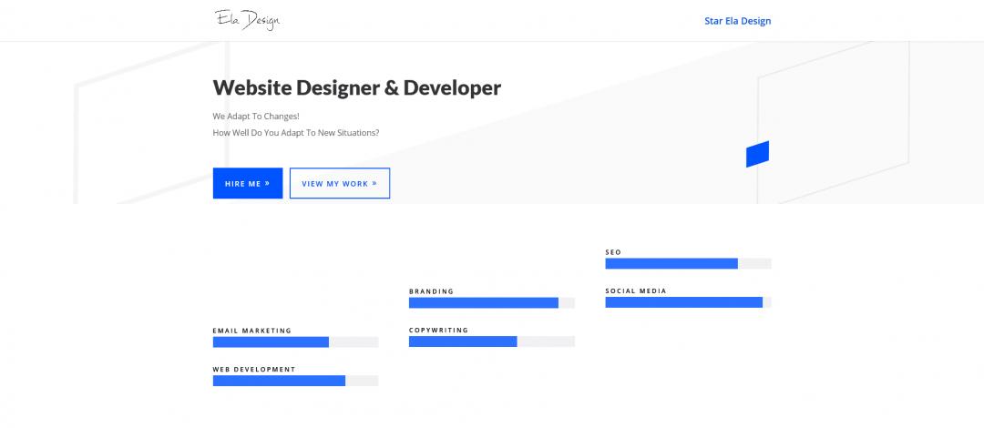 Website Designer & Developer